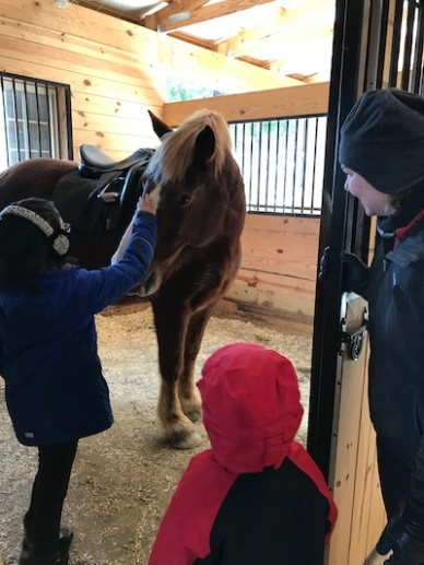 Horse Meet-1-small