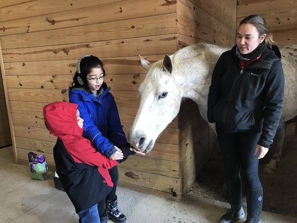 Horse meet 2 small